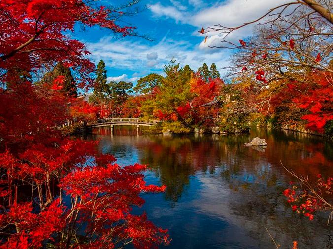 Aprende a disfrutar de los jardines japoneses