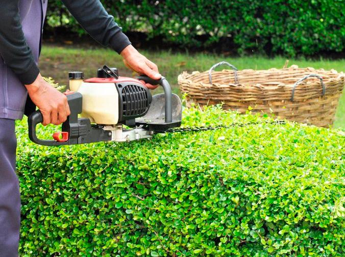 Por qué deberías contratar a un experto en el mantenimiento de jardines